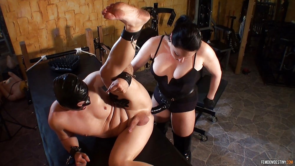 Gabrielle recommend Linni meister sex video